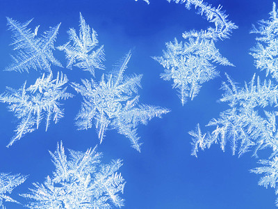 Snowflakes on glass, close-up, blue background